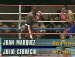 22 year old Juan Manuel Marquez shows signs of greatness against Julio Gervacio